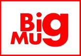 Bigmug